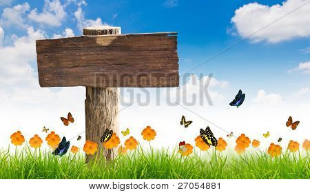 Wood sign with Yellow flowers, green grass and butterfly