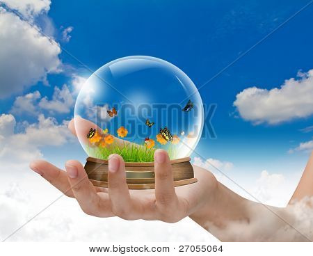 Hand hold snow-dome against a blue sky with butterfly ,green grass ,yellow flower inside