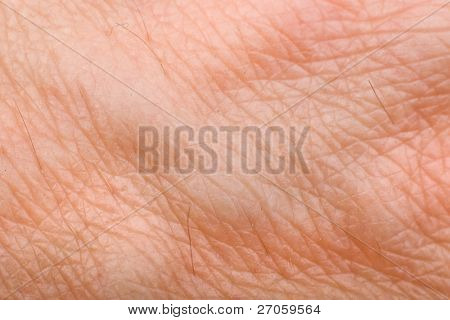 skin macro on 40 years old male arm