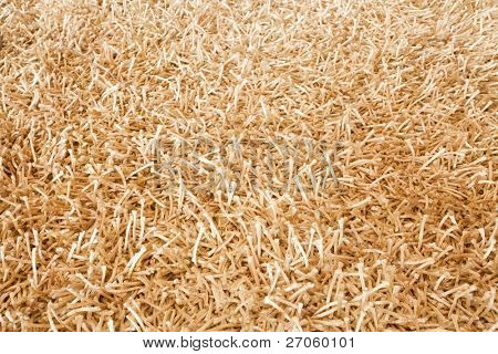background of shaggy carpet with long fibers