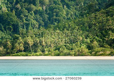 tropical coastline landscape at tioman island, malaysia