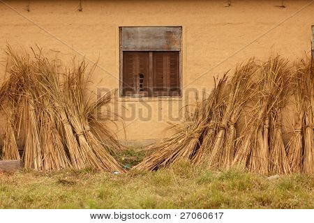 straw drying against clay wall in Terai, Nepal