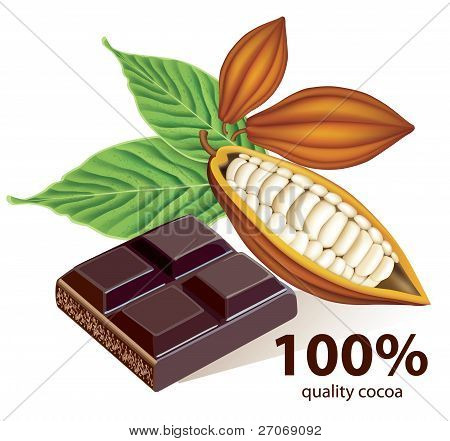 Vector cocoa beans with chocolate bar