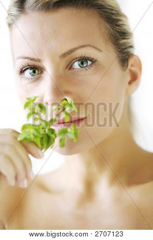 Herbal Body Care