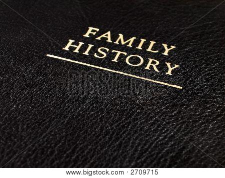 Familiengeschichte Leder Buch