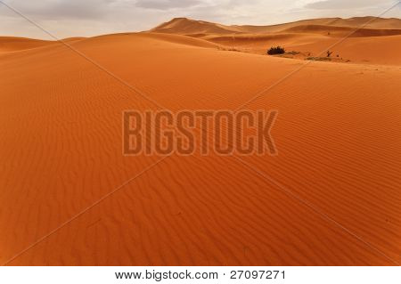 Wind Rippled Expanse Of Sand Dune With Glimpse Of Oasis In Sahara Desert Morocco On Cloudy Day.