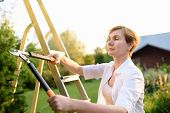 Portrait Of Mature Female Gardener. Woman Working With Secateur In Domestic Garden At Summer Day. Ga poster