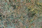 Fantastic Grunge Weathered Lichen On Stone Texture - Abstract Photo Background poster