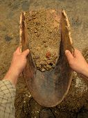 stock photo of gold panning  - Gold panning with old wooden pan - JPG