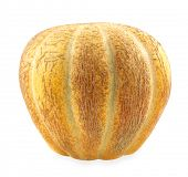 picture of muskmelon  - Muskmelon melon - JPG