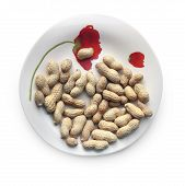 Roasted Peanuts In Their Nutshells On The Beautiful Plate Against White Background. Selective And So poster