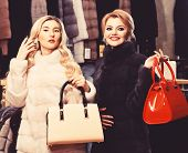 Girls With Smiling Faces In Black And White Fur Coats Hold Purses In Hands. Luxury Style Concept. Wo poster