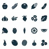 Fruit Icons Set With Pear, Fruit, Maize And Other Caffeine Elements. Isolated Vector Illustration Fr poster