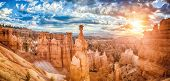 Panoramic View Of Amazing Hoodoos Sandstone Formations In Scenic Bryce Canyon National Park In Beaut poster