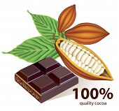 stock photo of cocoon tree  - Vector illustration of cocoa beans and a chocolate bar - JPG