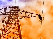 stock photo of power lines  - Electric power - JPG
