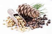 Pine nut cone and pine nuts on the white background. Organic food. poster