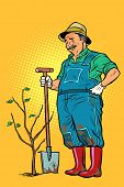 Old Gardener Plants A Seedling. Ecology And Gardening. Trees And Garden Tools. Pop Art Retro Vector  poster