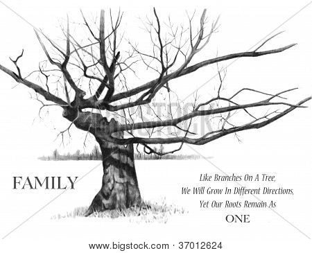 Gnarly Tree With Quote About Family