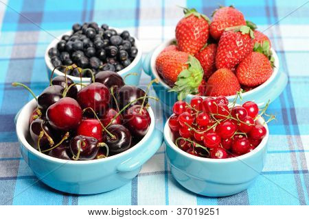 Wild berries in bowls - blueberry, redcurrant, cherry, strawberry