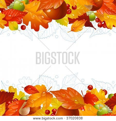 Vector autumn frame with fall leaf, chestnut, acorn and ashberry 8