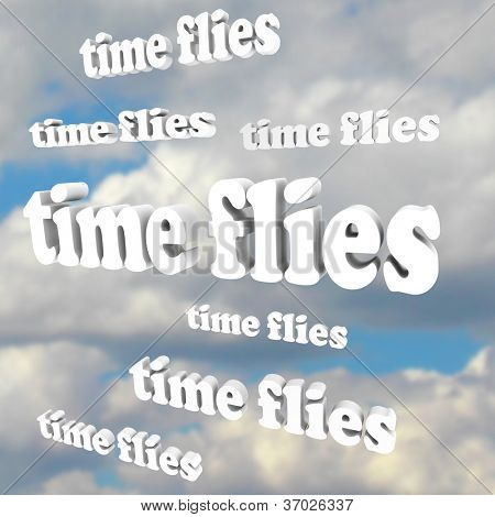 The words Time Flies in a blue cloudy sky, illustrating the passing of precious moments and fleeting nature of the present, past and future