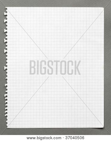Squared sheet of paper, isolated on grey