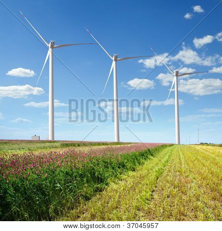 wind farms on the