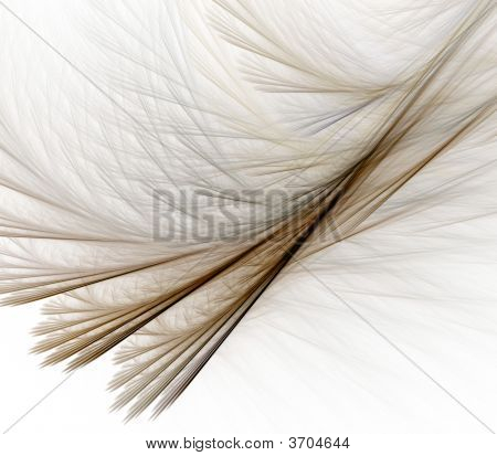 Feathery Layers Abstract