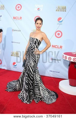 LOS ANGELES - SEP 16:  Ana Ortiz arrives at the 2012 ALMA Awards at Pasadena Civic Auditorium on September 16, 2012 in Pasadena, CA