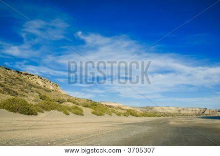 Seahore In Puerto Piramides Peninsula Valdes