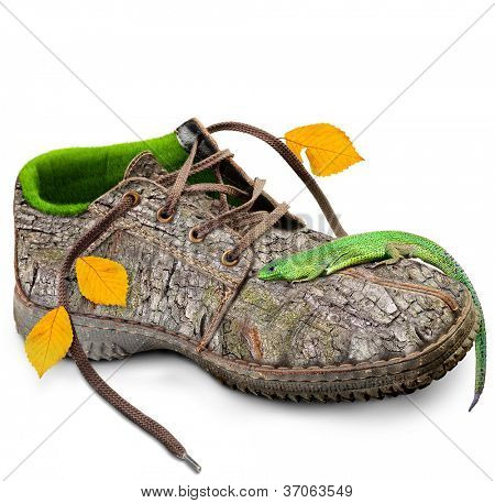 Concept Eco friendly shoes.  go green. think green. Shoes made of natural materials. Winter shoes from the bark of a tree, grass and leaves. Isolated over white background.