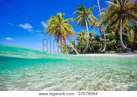 Tropical island at Tikehau atoll in French Polynesia