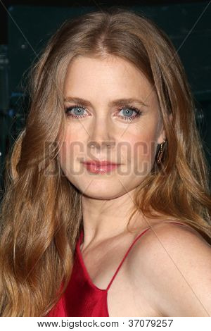 LOS ANGELES - SEP 19:  Amy Adams arrives at the