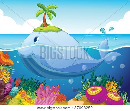 illustraion of a fish, island and coral in the sea