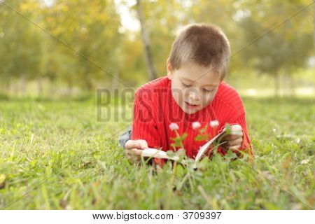 Boy Laying On Grass And Reading