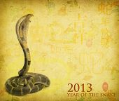 pic of chinese new year 2013  - Chinese Calligraphy 2013 for Year of Snake - JPG