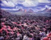 picture of impressionist  - Impressionist style image of Sedona Arizona as a painting - JPG