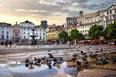 stock photo of pigeon  - Panorama of Rossio Square in old downtown Lisbon - JPG
