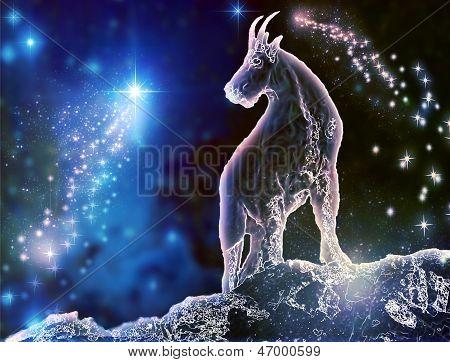 Capricorn_Sea-Ziege