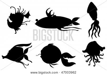 Illustration of the silhouettes of sea creatures on a white background