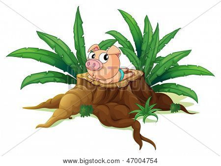 Illustration of a pig lying down above the wood on a white background
