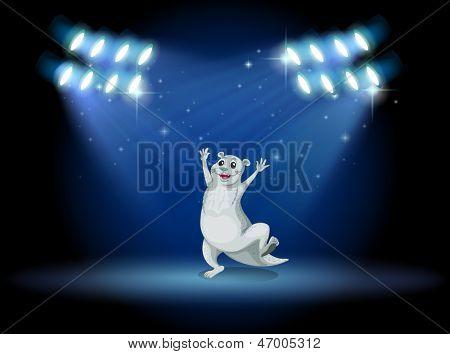 Ilustración de un sealion en el escenario con focos