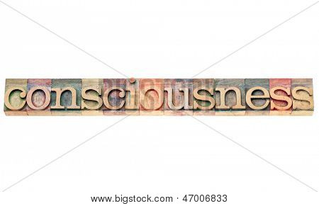 consciousness word - isolated text in letterpress wood type