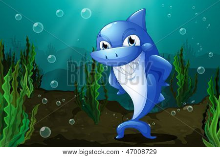 Illustration of a blue shark under the sea