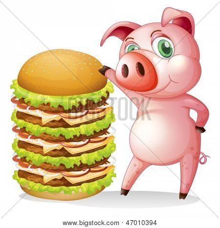 Illustration of a fat pig beside the giant hamburger on a white background