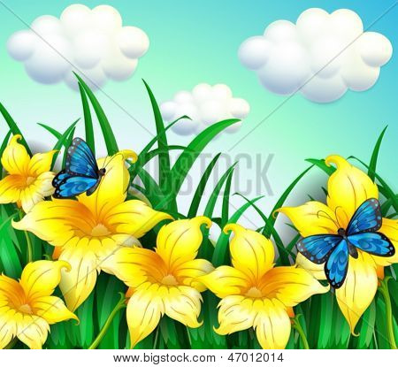 Illustration of a garden with yellow flowers and blue butterflies