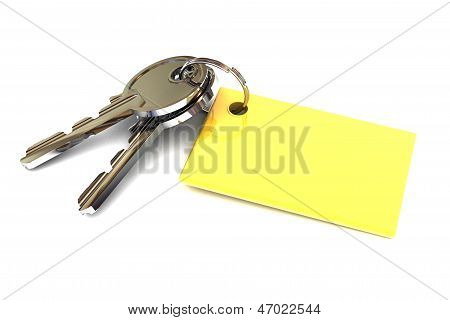Keys With Blank Gold Keyring