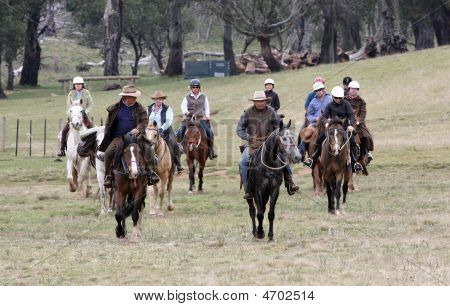 Group Of Horseriders