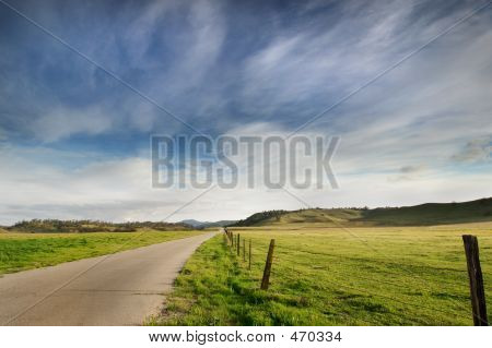 Country Road: Landscape